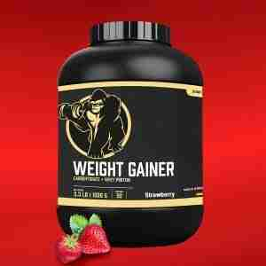 Weight Gainer 1